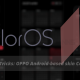 Tips and Tricks_ ColorOS 11